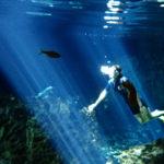 カンクンから日帰り♪世界一美しい水中洞窟セノーテの情報まとめ