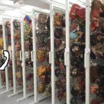 メキシコの民芸品コレクターの頂点に立つ、レチューガさんのコレクション