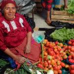 日曜のオアハカは、民芸品と食の宝庫「トラコルーラのティアンギス(市場)」へ!