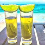 メキシコ人も唸らせる、最高に美味しいテキーラ3選(お土産にも!)